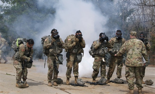 """Combined Best Warrior Competition Proves """"Best of the Best"""""""