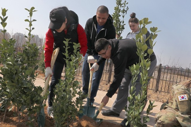 The Pyeongtaek citizens, Camp Humphreys Soldiers and their Families united to provide more greenery to the landscape of the Tongbok District in Pyeongtaek, March 29. More than 100 trees were planted, with the city planning to plant one million trees over the next year.