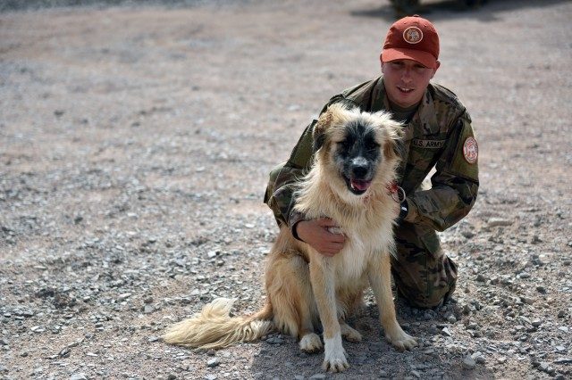A soldier supporting the Multinational Force and Observers take a moment to pet one of the dogs allowed as mascots at the MFO's remote sites, during a visit to the MFO by Air Force Gen. Joseph Lengyel, chief of the National Guard Bureau, the Sinai Peninsula, Egypt, May 1, 2019.