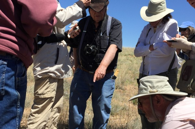 Dave Anderson points out a spiderwort to members of the Native Plant Society of New Mexico Albuquerque Chapter.