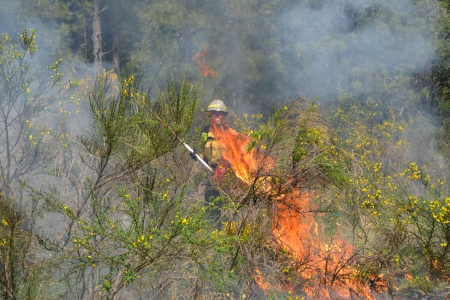 Emily Richardson, Joint Base Lewis-McChord Fish and Wildlife biologist, uses her drip torch to set a prescribed burn in Training Area 6 on JBLM, May 9.