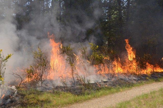 Fire from a prescribed burn makes its way through Training Area 6 on Joint Base Lewis-McChord, May 9.