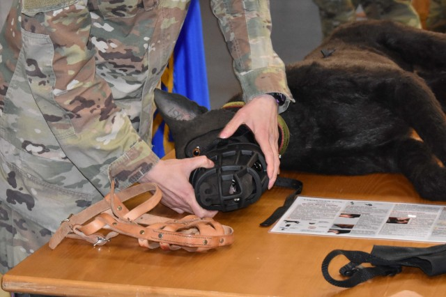 Maj. Desiree Broach, animal behaviorist at Veterinary Medical Center Europe, demonstrates the benefits of different dog muzzles.