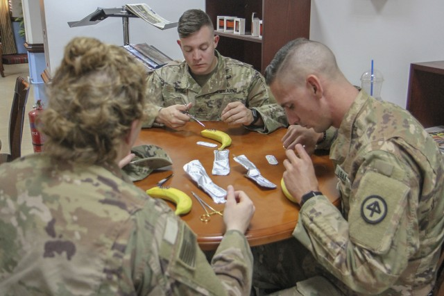 Army Sgt. Kenneth Wise, center, medical platoon sergeant, Headquarters and Headquarters Company, 1st Battalion, 114th Infantry Regiment, New Jersey Army National Guard, practices his suturing technique on a banana peel as part of training to treat military working dogs. Also participating in the training with Wise are Sgt. Joseph Fiore, right, medic, and 1st Lt. Ellia Miller, medical logistics officer, both with HHC, 1st Bn., 114th Inf. Rgt.
