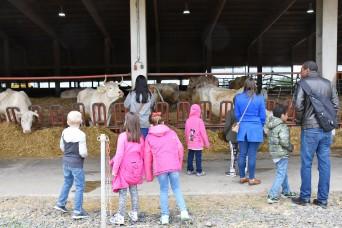 Farm life:  Hainerberg first-graders visit organic farm