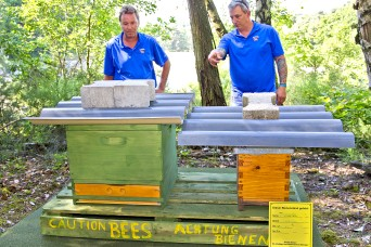 Teaming up to 'bee' good neighbors: German-American project helps protect environment