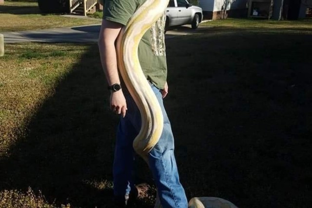 """Spc. Matthew Williams, Combat Engineer for 9th Brigade Engineer Battalion, 2nd Armored Brigade Combat Team, 3rd Infantry Division, holds """"Lilith"""" a 14ft reticulated python June 23 at a residence home in Hinesville Ga. The reticulated python is native to South and Southeast Asia and considered the world's longest snake. (U.S. Army photo by Pfc. Devron Bost/released)"""