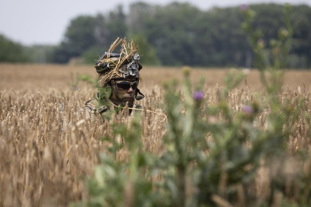 Staff Sgt. Mark Anthony Ramirez, platoon sergeant with 1st Battalion, 16th Infantry Regiment, 1st Armored Brigade Combat Team, 1st Infantry Division, peaks above the concealment of a wheat field during an air assault mission at Saber Guardian 19, June 20, 2019. Exercises such as Saber Guardian 19, continue to increase participating nations' readiness and capacity to conduct full spectrum military operations. They send a clear message that the U.S. and its allies and partners work skillfully together. (U.S. Army photo by Sgt. Thomas Mort)