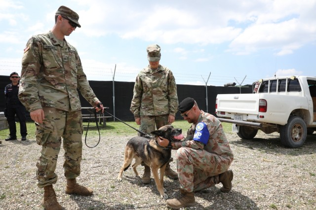 Kosovo Forces Provost Marshal, Swiss Army Lt. Col. Stephan Theimer and Multinational Battle Group East Deputy Provost Marshal, U.S. Army 1st Lt. Sarah Baermann praise Military Working Dog Beri after an explosives demonstration with his handler U.S. Army Pfc. Evan Tortorigi, MNBG-E MP on Camp Bondsteel, July 25, 2019. The various MP units came together for a monthly meeting intended to disseminate information and build camaraderie. (U.S. Army Photo by Spc. Lynnwood Thomas, 40th Public Affairs Detachment)