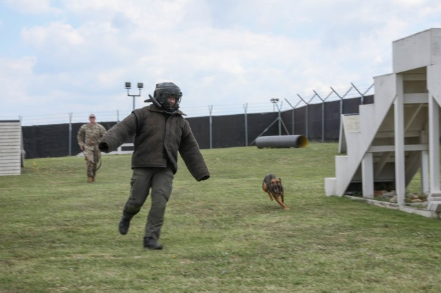Military Working Dog Diana and U.S. Army Sgt. Mathew Dobson with Multinational Battle Group East MPs, perform an attack demonstration with a volunteer from the International Military Police on Camp Bondsteel, July 25, 2019. The MP units came together for a monthly meeting intended to disseminate information and build camaraderie. (U.S. Army Photo by Spc. Lynnwood Thomas, 40th Public Affairs Detachment)