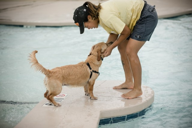 Dogs took over the Palmetto Falls Water Park Aug. 24 as the season came to a close. Family pets from across the Fort Jackson community came out to play in the water, get treats and meet new furry friends.