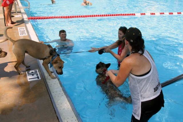 Some dogs had to be coaxed into the water Sept. 7, 2019, by their owners. The Dog Days of Summer was the third dog-centric event sponsored by the Patriot Club this year. There were two dog meet-and-greet Yappy Hours.