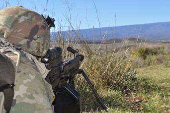 Charlie Company, 100th Battalion, 442nd Infantry Regiment conduct squad tactical exercises