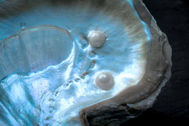 Round, smooth and iridescent, pearls are among the world's most exquisite jewels; now, these gems inspire U.S. Army researchers looking to improve military armor.