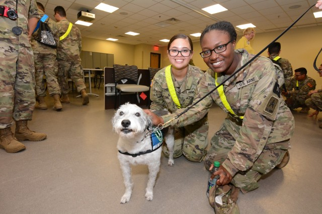 Two Soldiers pose for a photo with a working therapy dog brought by volunteers with Paws 4 Hearts.