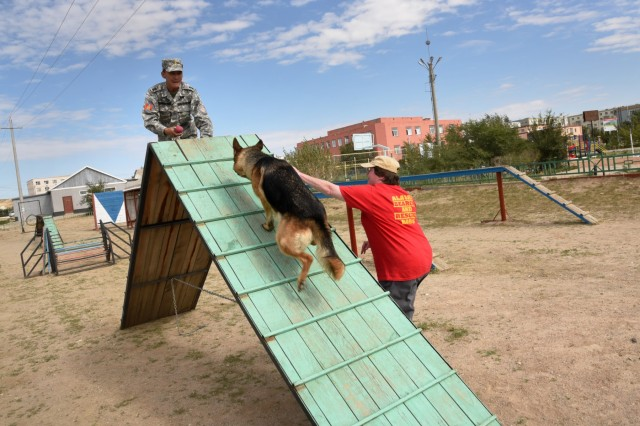 "Debra Gillis, a volunteer with Alaska Search and Rescue Dogs, helps train and assist members of the National Emergency Management Agency (NEMA) rescue unit, Sept. 8, 2019, as part of Gobi Wolf 19 in Sainshand, Mongolia. GW 19 is hosted by the Mongolian National Emergency Management Agency and Mongolian Armed Forces as part of the United States Army Pacific's humanitarian assistance and disaster relief ""Pacific Resilience"" series."