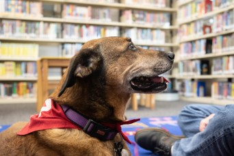 Dog visits Wiesbaden Library for PaWs read-aloud program