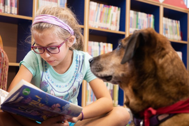 A young girl named Clara reads aloud to Penny, a volunteer animal, during the Pets and Warriors (PaWs) program at Wiesbaden Library in Clay Kaserne, Wiesbaden, Germany, October 2, 2019. Penny passed the Canine Good Citizen test, which is sponsored by the American Kennel Club and does well in crowded room with children. (U.S. Army Photo by Pfc. Laurie Ellen Schubert, 5th Mobile Public Affairs Detachment)