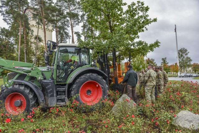 Planting an oak tree- growing community roots
