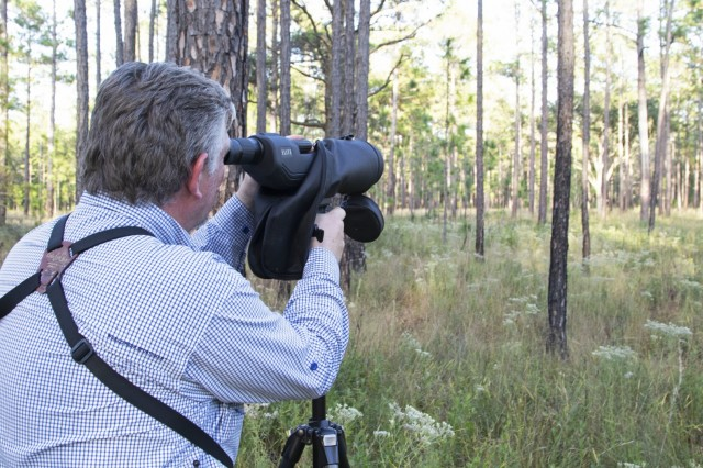 Larry Carlile, chief of the Fish and Wildlife Service branch at Fort Stewart-Hunter Army Airfield, looks through a spotting scope in search of a red-cockaded woodpecker cavity at Fort Stewart, Ga., Oct. 23, 2019. Ten red-cockaded woodpeckers were collected from Fort Stewart for translocation to St. Marks National Wildlife Refuge in Florida in order to grow the refuges population of red-cockaded woodpeckers. (U.S. Army photo by Sgt. Zoe Garbarino)