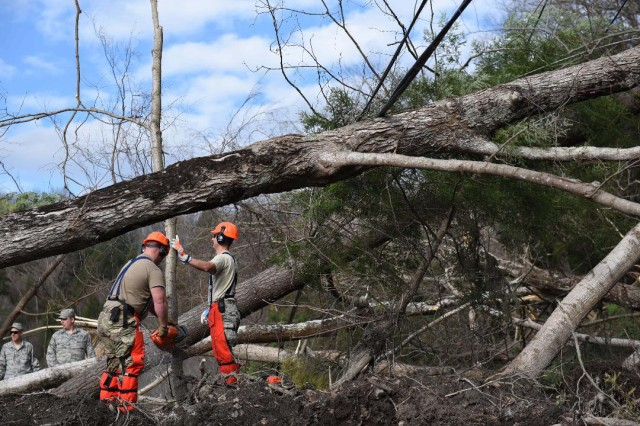 Airmen from the 174th Attack Wing chainsaw fallen trees to help with the removal of debris from a blocked road in Herkimer County, N.Y. on Nov. 2, 2019. The Airmen were supporting Operation November Winds, the New York National Guard mission to provide support to citizens of Herkimer County.
