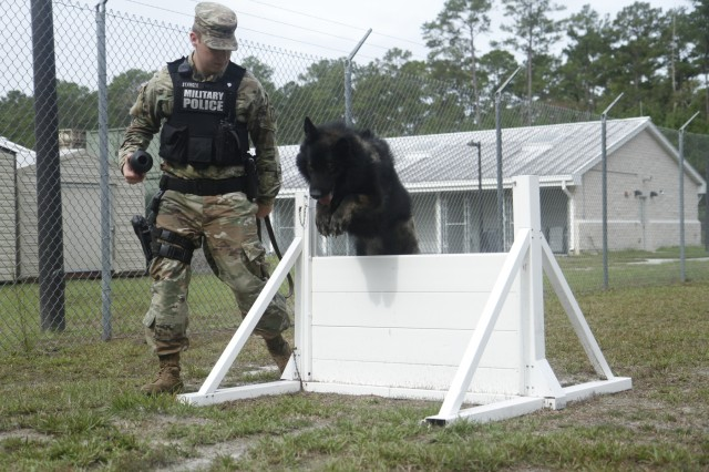 Spc. Brady Stanger, 93rd Military Working Dog Detachment, 385th Military Police Battalion, 16th Military Police Brigade, works with an MWD, Nov. 5, 2019, at the kennels at Fort Stewart, Georgia. The kennel on FSGA is a U.S. Army Forces Command medium-sized kennel and houses several military working dogs.
