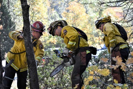California Fire Department captain instructs California National Guard service members supporting Joint Task Force Rattlesnake in chainsaw operations at Project Area Highway 44 near Shingletown, Oct. 31, 2019.