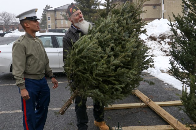 A member of the Veterans of Foreign Wars (VFW) preps a tree for donation to a Marine during Trees for Soldiers at Devens Reserve Forces Training Area (Devens RFTA) Dec. 6. Trees for Soldiers is an annual event whereby local Massachusetts area non-profit organizations donate free trees to Servicemembers and their families during the holiday season.