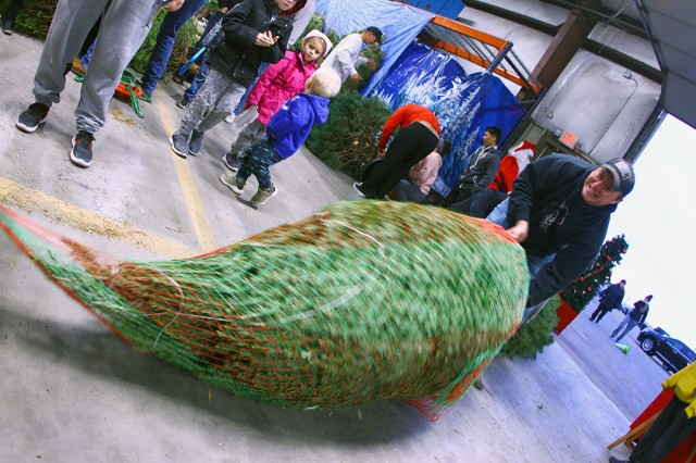 Volunteer Phillip Smith wraps a Christmas tree in nylon mesh for easy transport for a family Dec. 14, 2019, at the Recycle Center. The mesh collects the pine needles, and keeps the branches in tact.