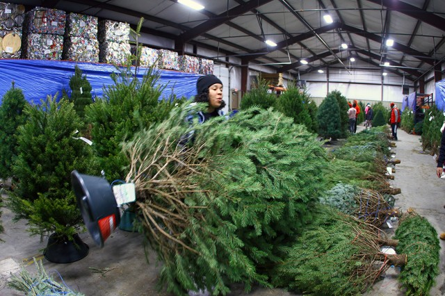 Sgt. Alitssa Lopez-Gilmore, A Battery, 5th Battalion, 5th Air Defense Artillery, gets in some practice for the Army Combat Fitness Test as she hauls her tree Dec. 14, 2019, at the Recycle Center. The tree stands were functional and not provided as part of the trees.