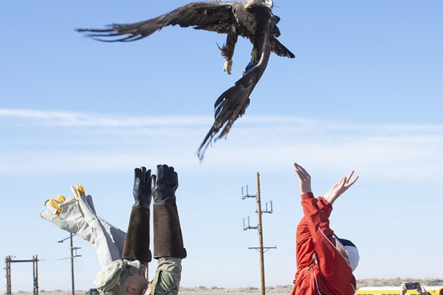 Army Sgt. Zachary Dunn (left) and Robbie Knight (red jacket), each held a wing and then tossed the golden eagle into the skies over Dugway Proving Ground, Utah. Witnessing the Dec. 19, 2019 event were Dugway School students, teachers, Tooele School District officials and local bird admirers.