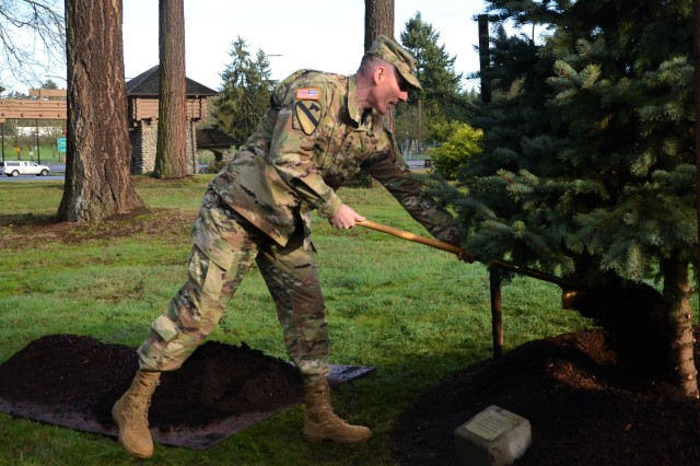 Lt. Gen. Gary Volesky plants a blue spruce tree Jan. 27 in the Commanding General's Arboretum at Joint Base Lewis-McChord to commemorate his time as I Corps commanding general.