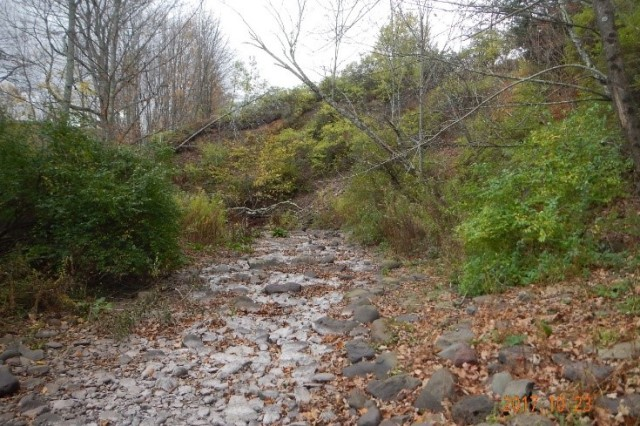 Before Photo. Hardscrabble's steep eroding embankment. Credit. DCSWCD.