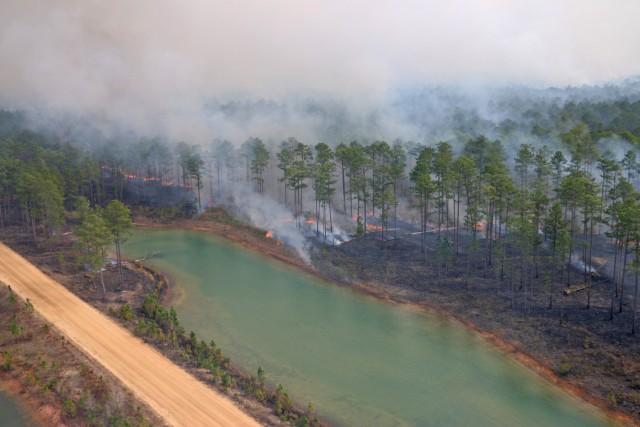 Controlled burns improve training areas, habitats, prevent wildfires