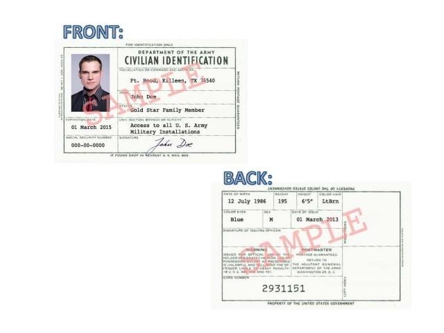 Survivor access card sample