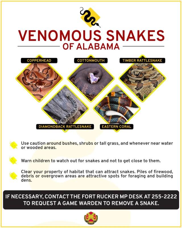 Snake safety