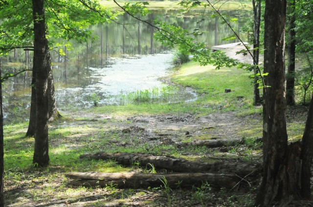 A view of one of the ponds found at the Marion Bonner Recreation Area.