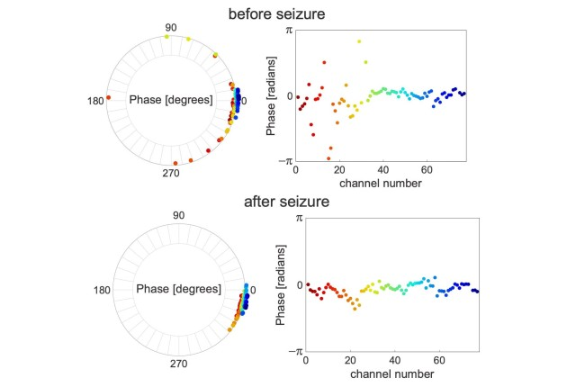 Researchers analyze a derived phase of each recording channel at two time points: 10 minutes before and 10 minutes after a seizure. The seizure-onset channels (channel 1-32) show de-synchronization before the onset of the seizure with coexisting synchronized neural activities in the non-seizure onset channels. After the seizure terminates, all channels are well-synchronized. The colors of the dots in the circular phase plots are identical to those in the phase-by-channel number plots.