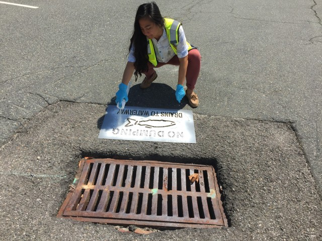 """Dina Huynh, mid-level staff scientist, labels a storm drain with a stencil and spray paint that reads, """"No Dumping Drains to Waterway"""".  Over 100 storm drains in areas identified as high risk for illicit discharges and dumping were labeled with either a stencil or placard. These signs remind tenants that storm drains carry runoff directly to a natural water body."""