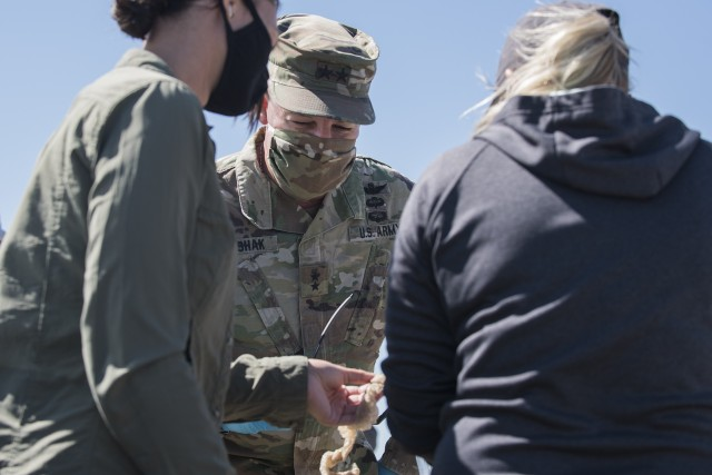 Key military leaders assist with tagging and the study of rattlesnakes