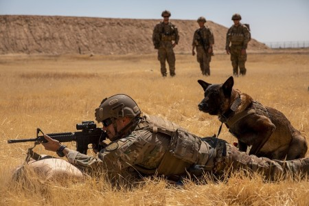 U.S. Army Sgt. Michael Ramirez fires his M4 carbine with his military working dog next to him during a live fire exercise at Al Asad Air Base, Iraq, May 8, 2020. The exercise was conducted to build teamwork between the dogs and their handlers.
