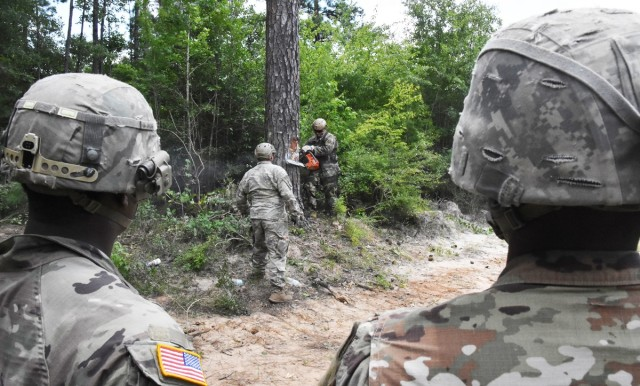 46th Engineer Battalion and 3rd BCT Soldiers particpate in abatis training conducted by JRTC Operations Group Task Force 5, at the Joint Readiness Training Center and Fort Polk's Peason Ridge training area July 15.