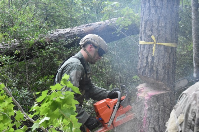 A Soldier makes a tongue and groove cut on a pine tree during abatis training July 15 at Peason Ridge. An abatis is a field fortification used to slow the advance of an enemy, typically by felling trees in a criss/cross pattern across avenues of approach.