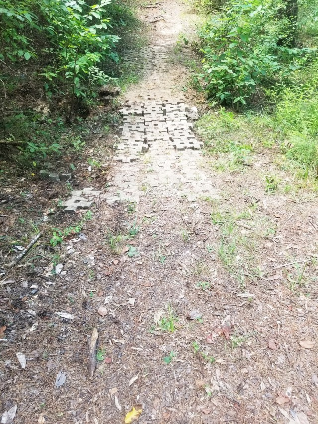 Stones lining a low area along the nature trail path were straightened to improve safety and keep feet from getting muddy as people walk the trail in wetter weather.