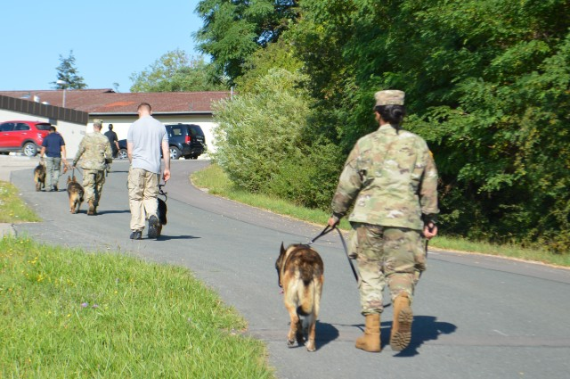 Army dog handlers and their military working dogs walk back to the kennels after finishing a socialization exercise, where the dogs learn to interact with each other, Aug. 7 at Oberdachstetten Training Area. All the dogs had muzzles on to prevent injuries and remained leashed. Seven teams from Ansbach and three from Grafenwoehr received the daylong conflict management training that consisted of socialization exercises and classroom training on working dog psychology, instinctive drives and behavior, communication and canine body language, and canine stress management.