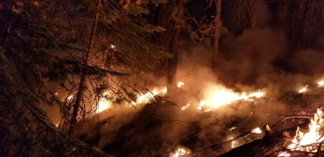 Wildland fires burn during a mid-August night near Susanville, Calif. A series of wildland fires has destroyed more than 30,000 acres of land around Susanville.