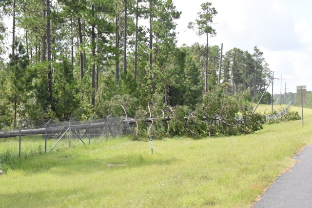 The perimeter fence of the Joint Readiness Training Center and Fort Polk was damaged in numerous places by falling trees, the result of Hurricane Laura's 130 miles per hour winds.