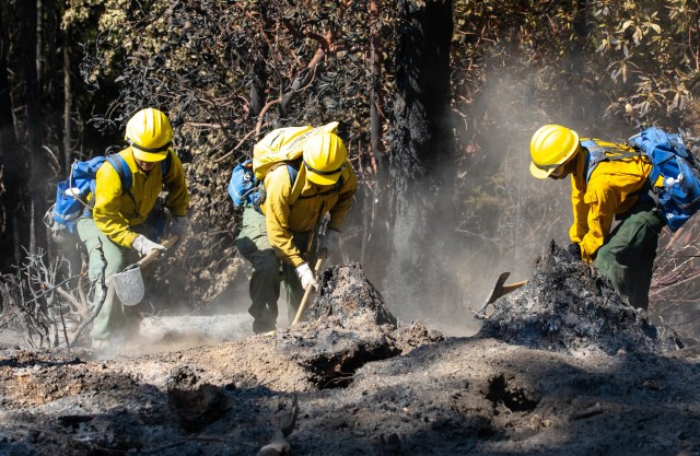 14th BEB and wildland firefighters conduct mop-up operations