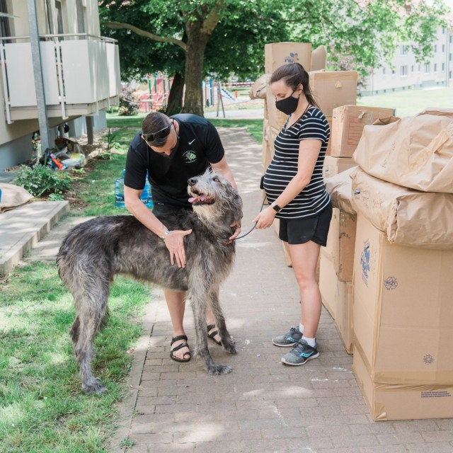 Lt. Col. David Chapman and his expectant wife, Jaime, with their 152 pound Irish wolfhound, Wally, during their household goods pack out May 20, 2020.