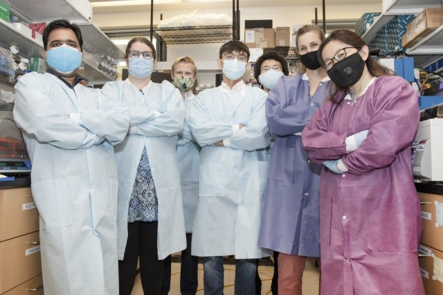 Human testing for Army-led coronavirus vaccines in sight